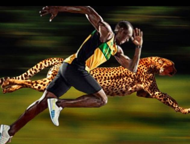 $60 Million Net Worth ;World's Fastest Man On The Planet ...